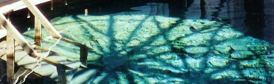 jefferson-pools-interior-2_1280x394