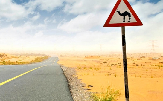 Camels Crossing, rego's life, weekend of a spy, daniel craig, for the weekend